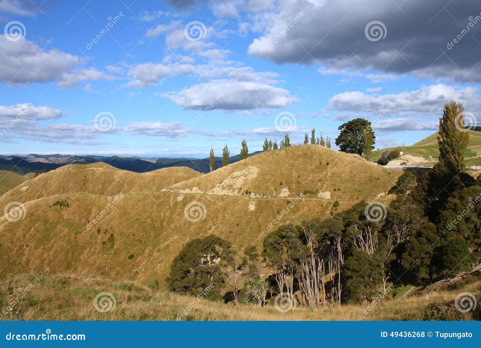 Nowa Zelandia wzgórza