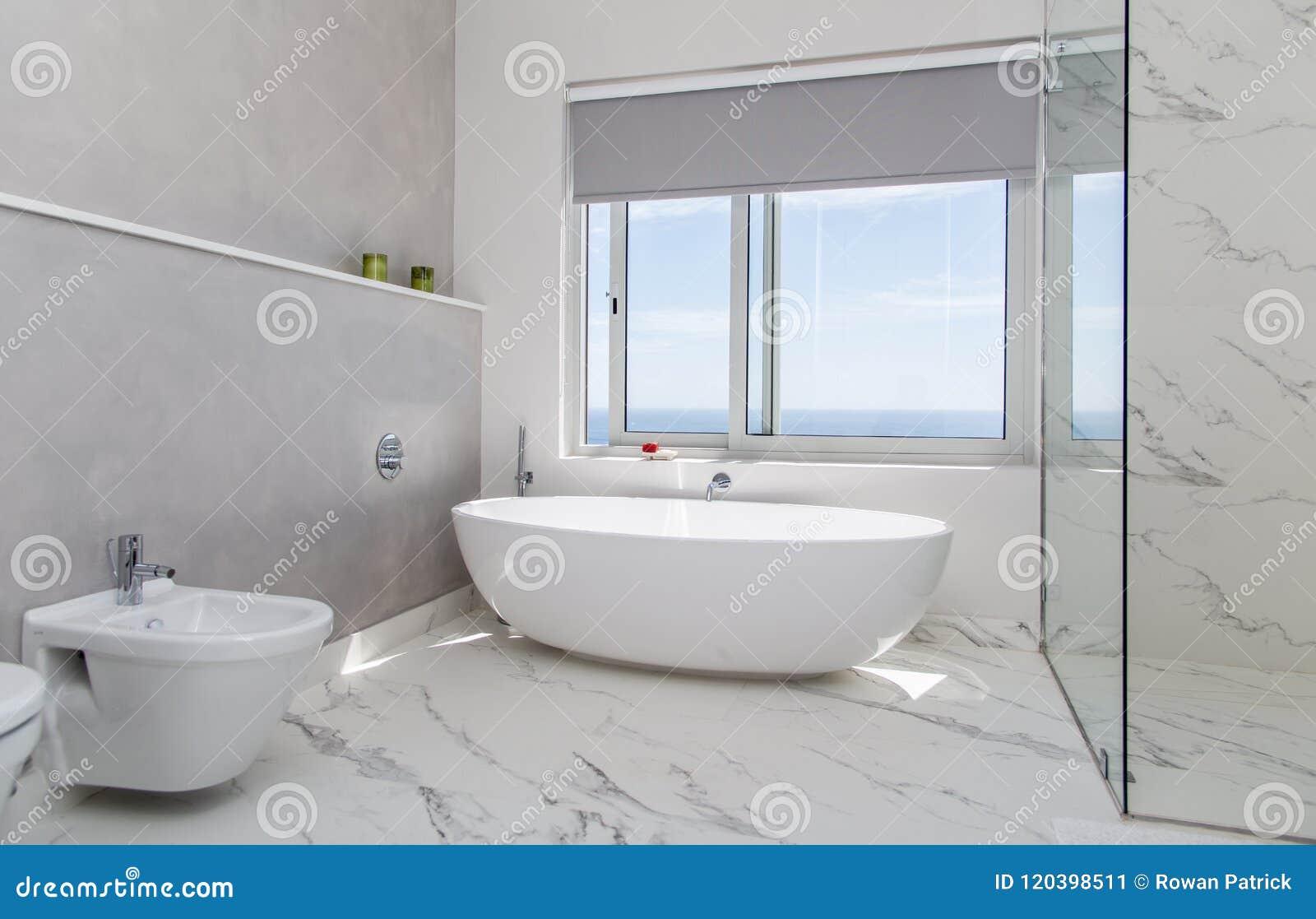 Nowożytny łazienka biel