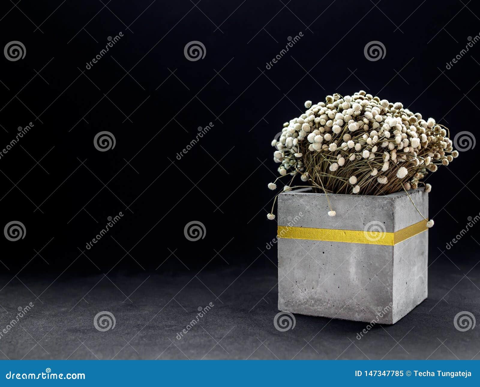 Nowo?ytny kubiczny betonowy plantator z rocznika kwiatem Maluj?cy betonowy garnek dla domowej dekoracji