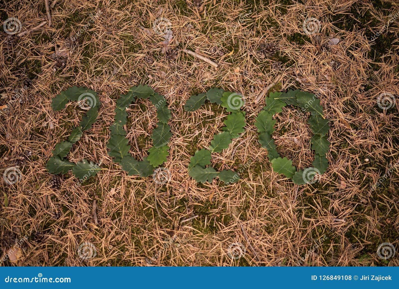 Nowy Rok 2020, liczba 2020