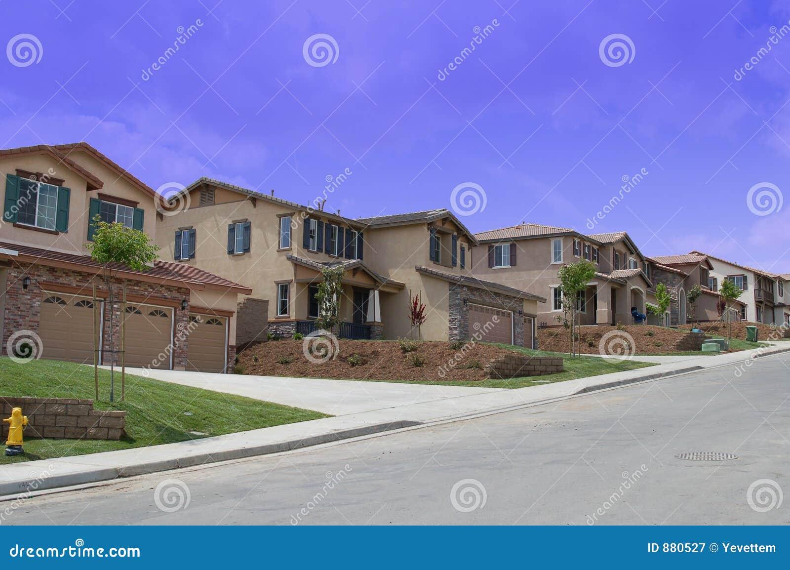 Nowy z sąsiedztwa rozpieszczony