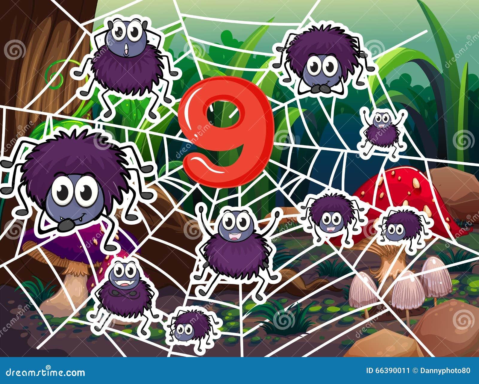 Nr. neun mit neun Spinnen auf Netz