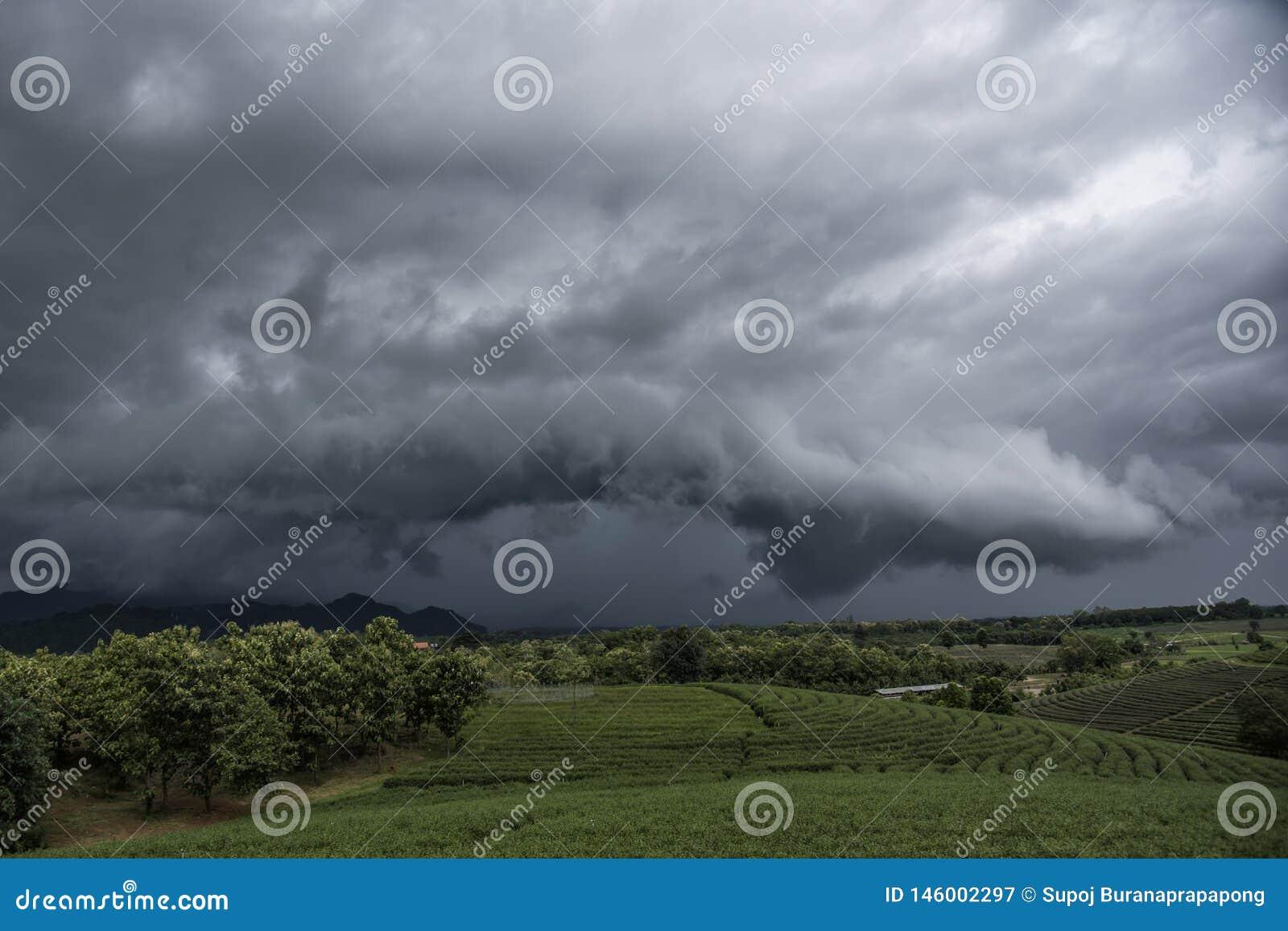 Nuage d Arcus avant orage Paysage nuageux avec des nuages de tempête à la plantation de thé dans le jour de temps orageux