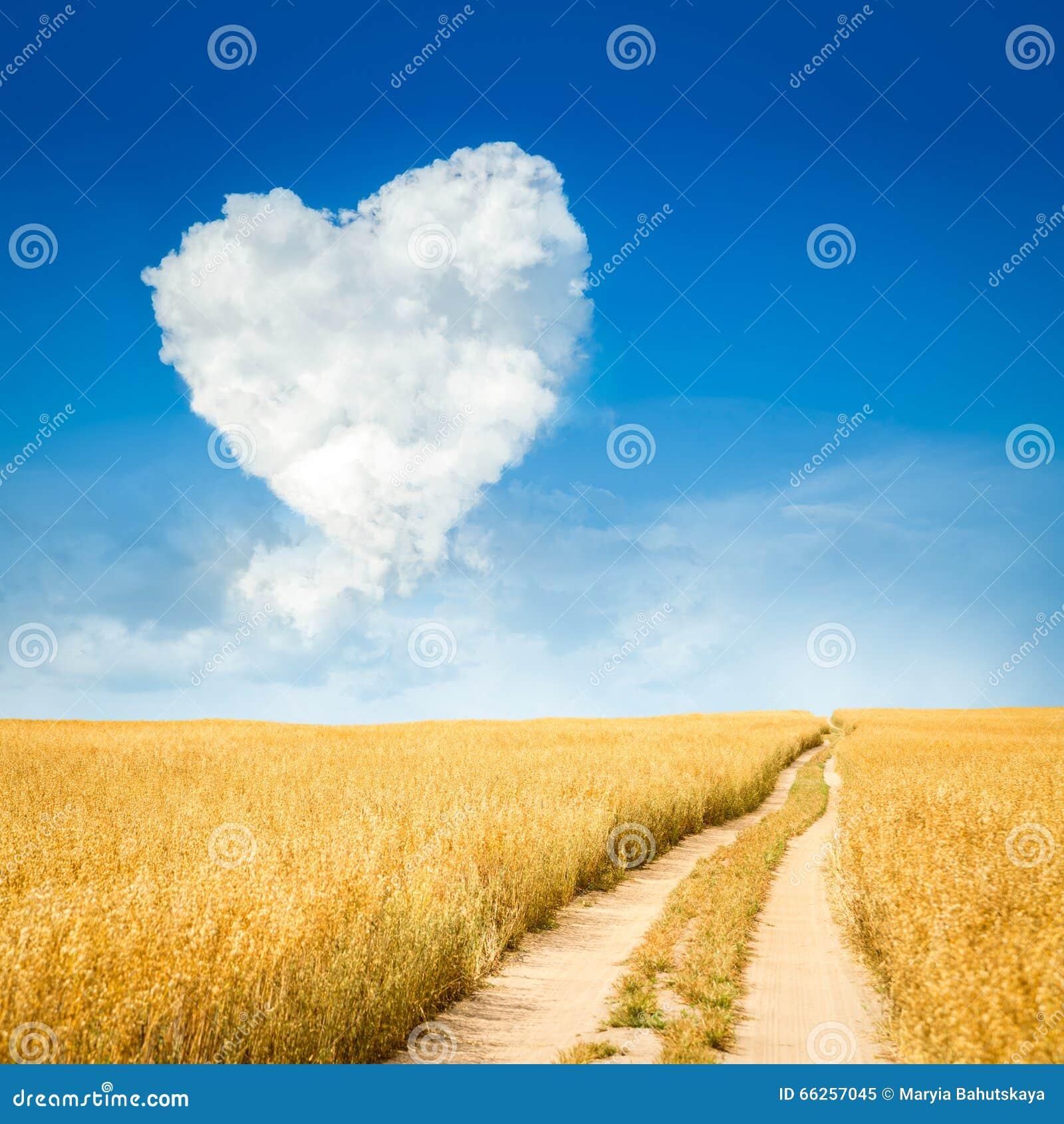 nuage en forme de coeur et paysage jaune de champ photo stock image 66257045. Black Bedroom Furniture Sets. Home Design Ideas
