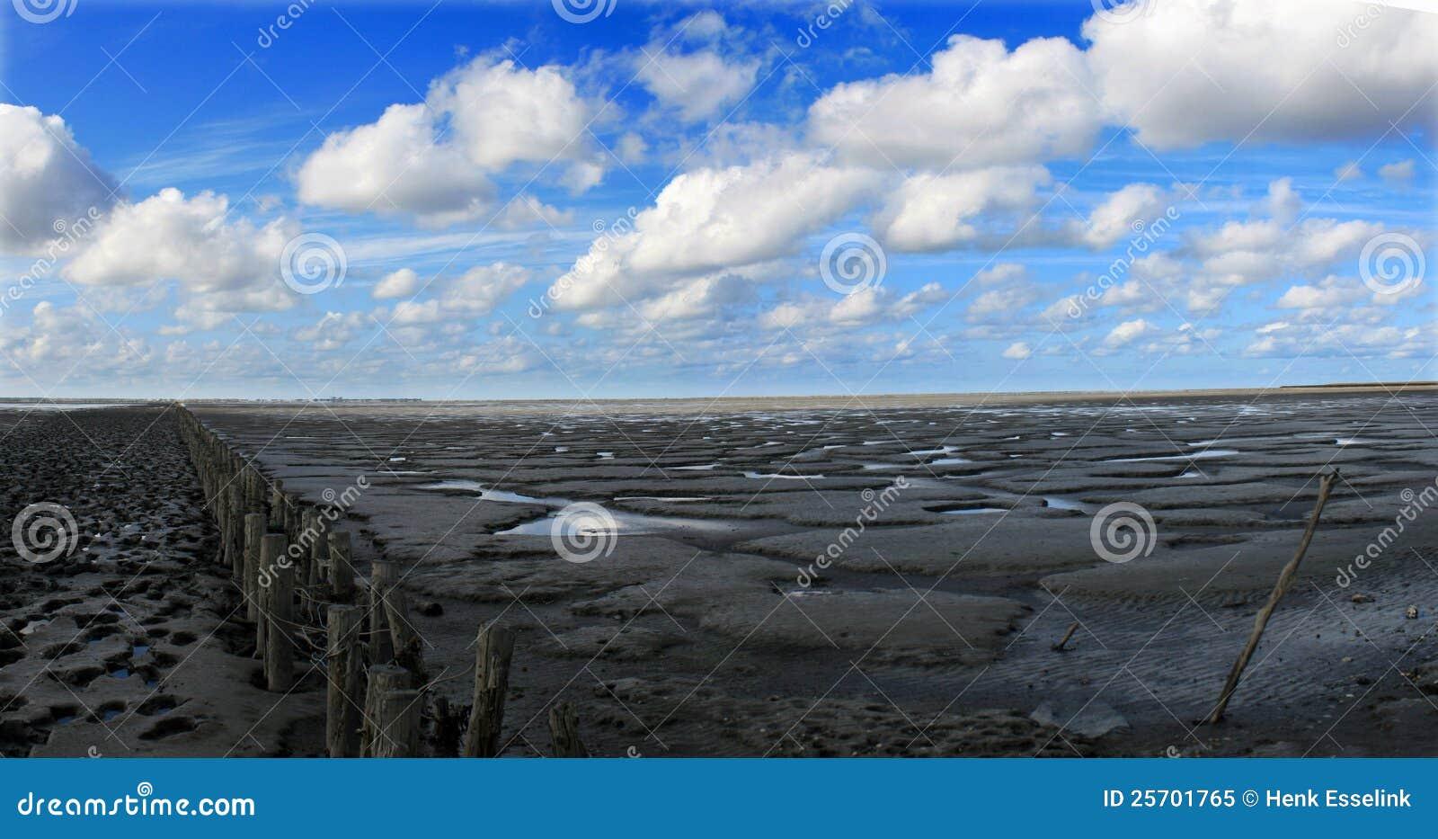 Nuages au-dessus de plage à marée basse