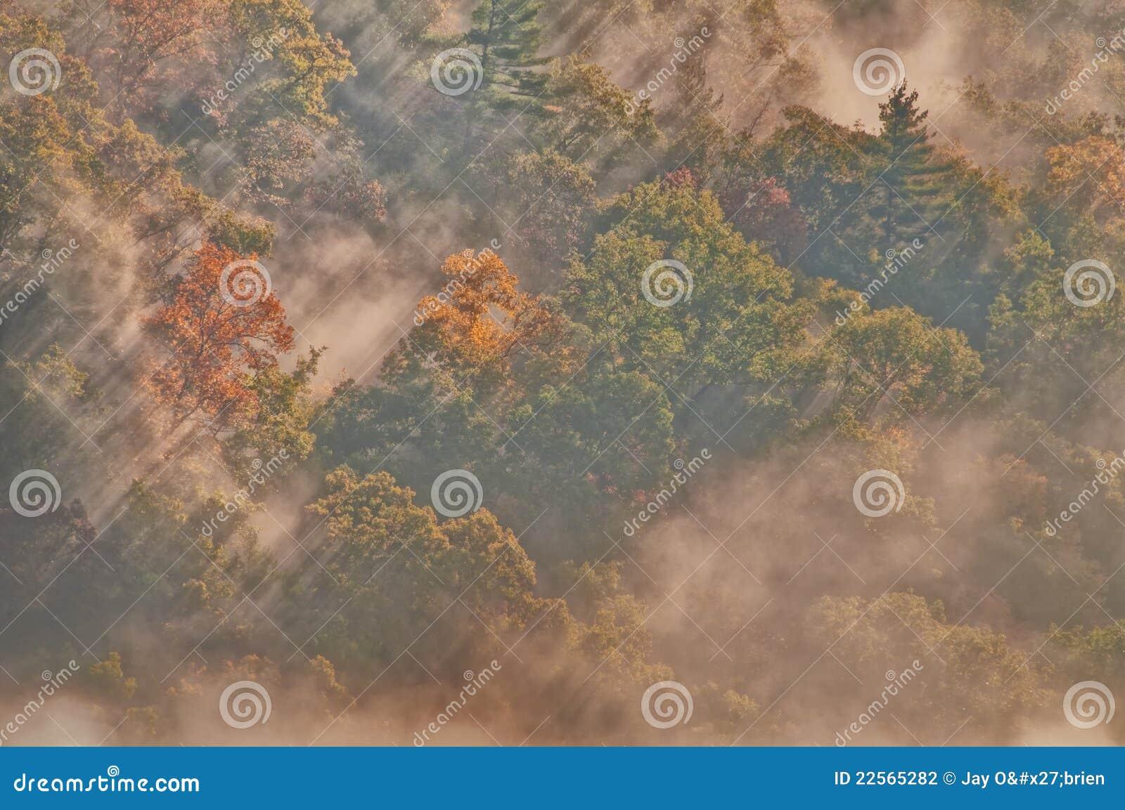Nuages, brouillard et regain