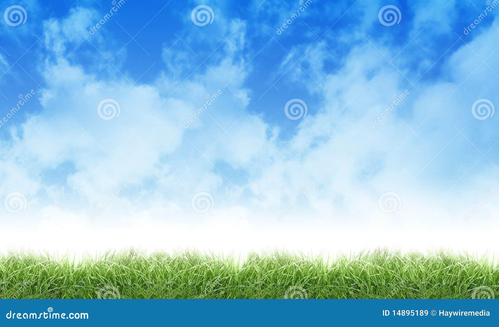 Nuages et herbe verts de ciel de nature d Eco