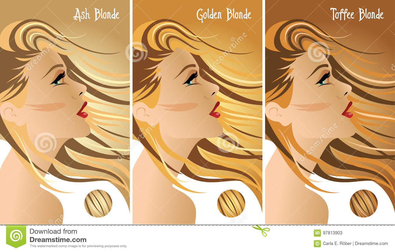 Nuancier De Cheveux Blonds Illustration De Vecteur Illustration Du