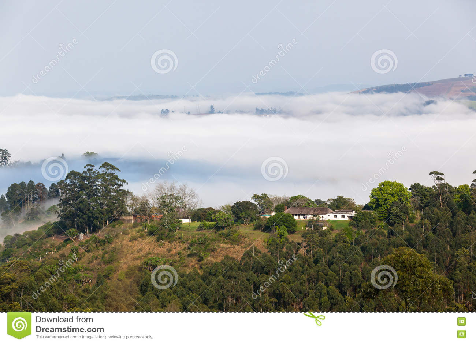 Nube Misty Valley Hills Farmland