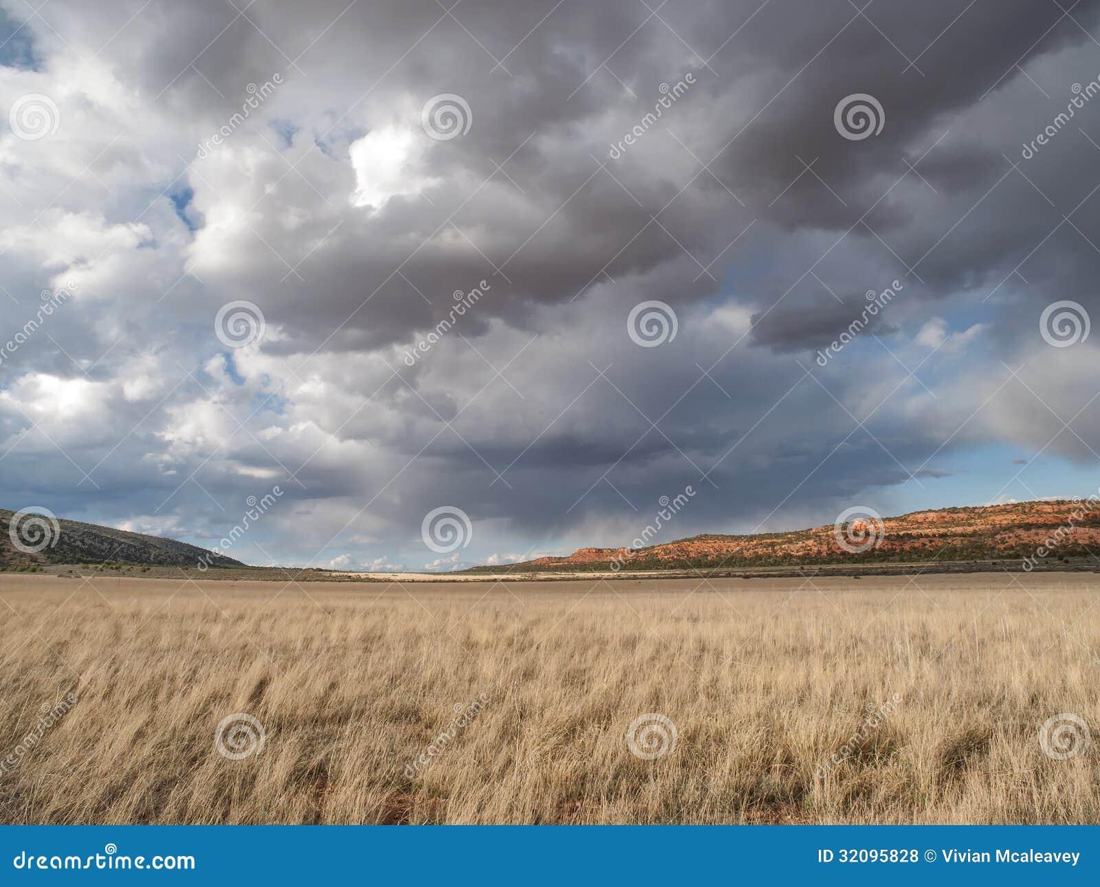 Nubes de lluvia sobre campo del desierto