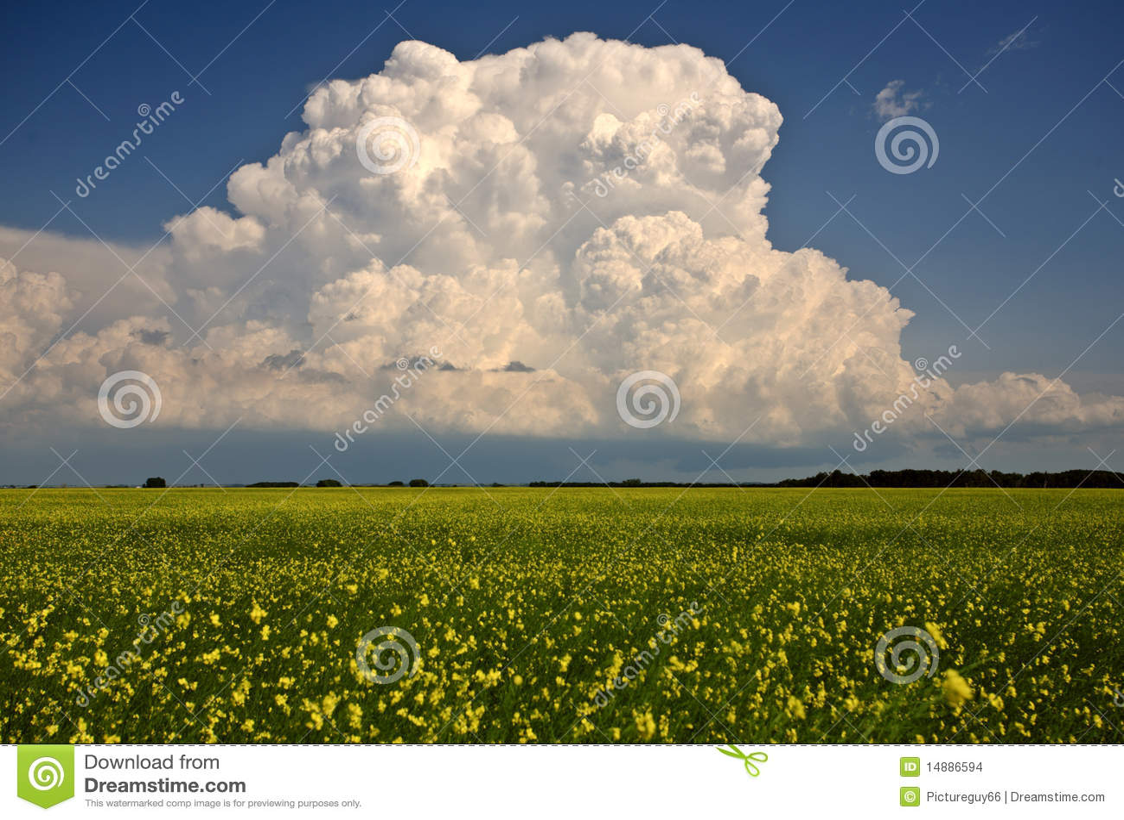 Nubes de tormenta sobre Saskatchewan