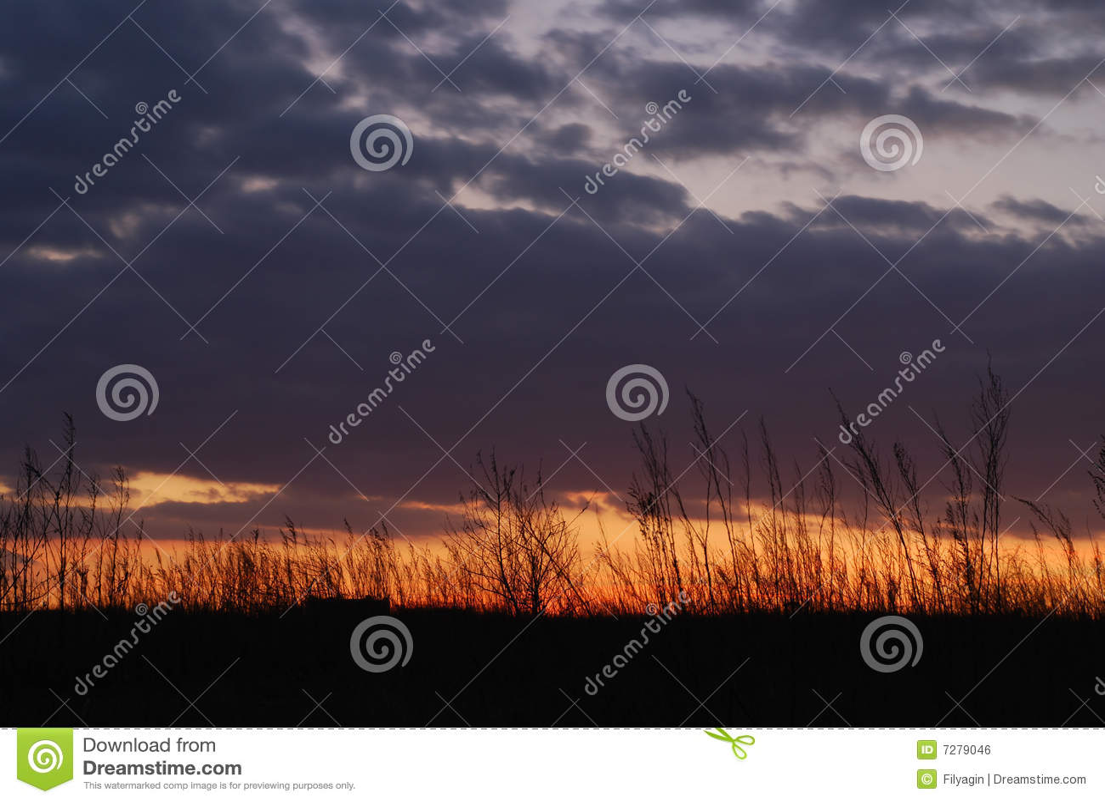 Nubes, malas hierbas, y puesta del sol