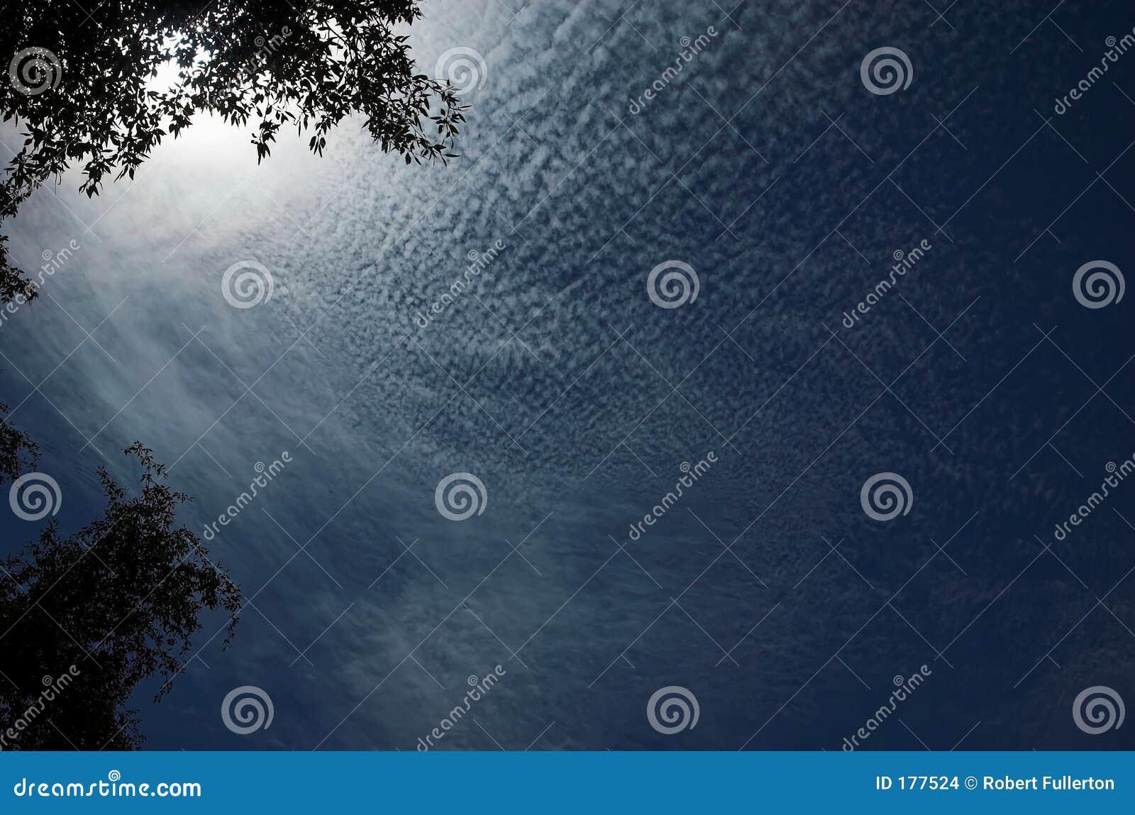 Nubi del pettine di mattina