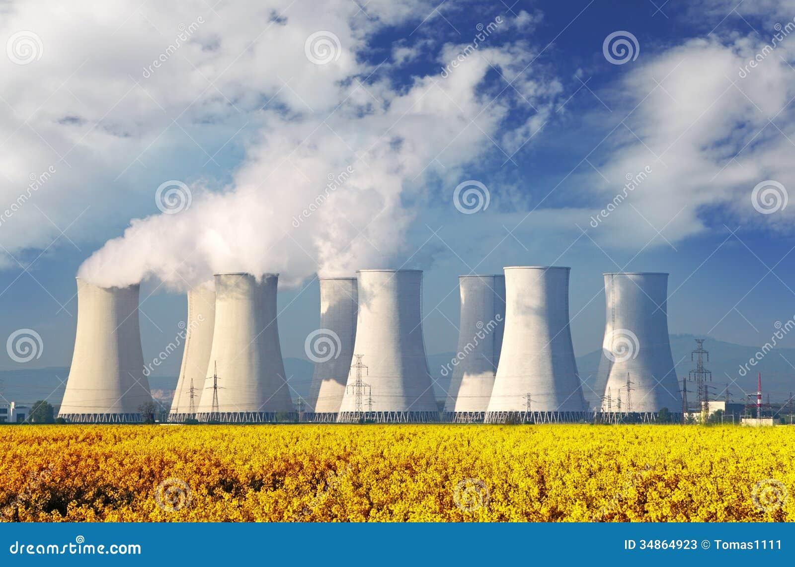 essays on nuclear power plants