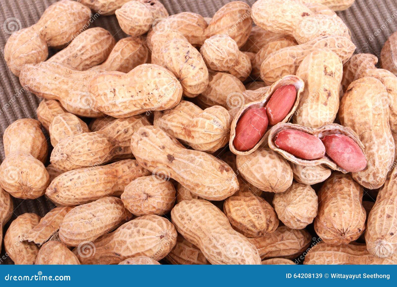 Nueces de mono, cacahuetes o cacahuetes en las cáscaras, aisladas en un fondo blanco