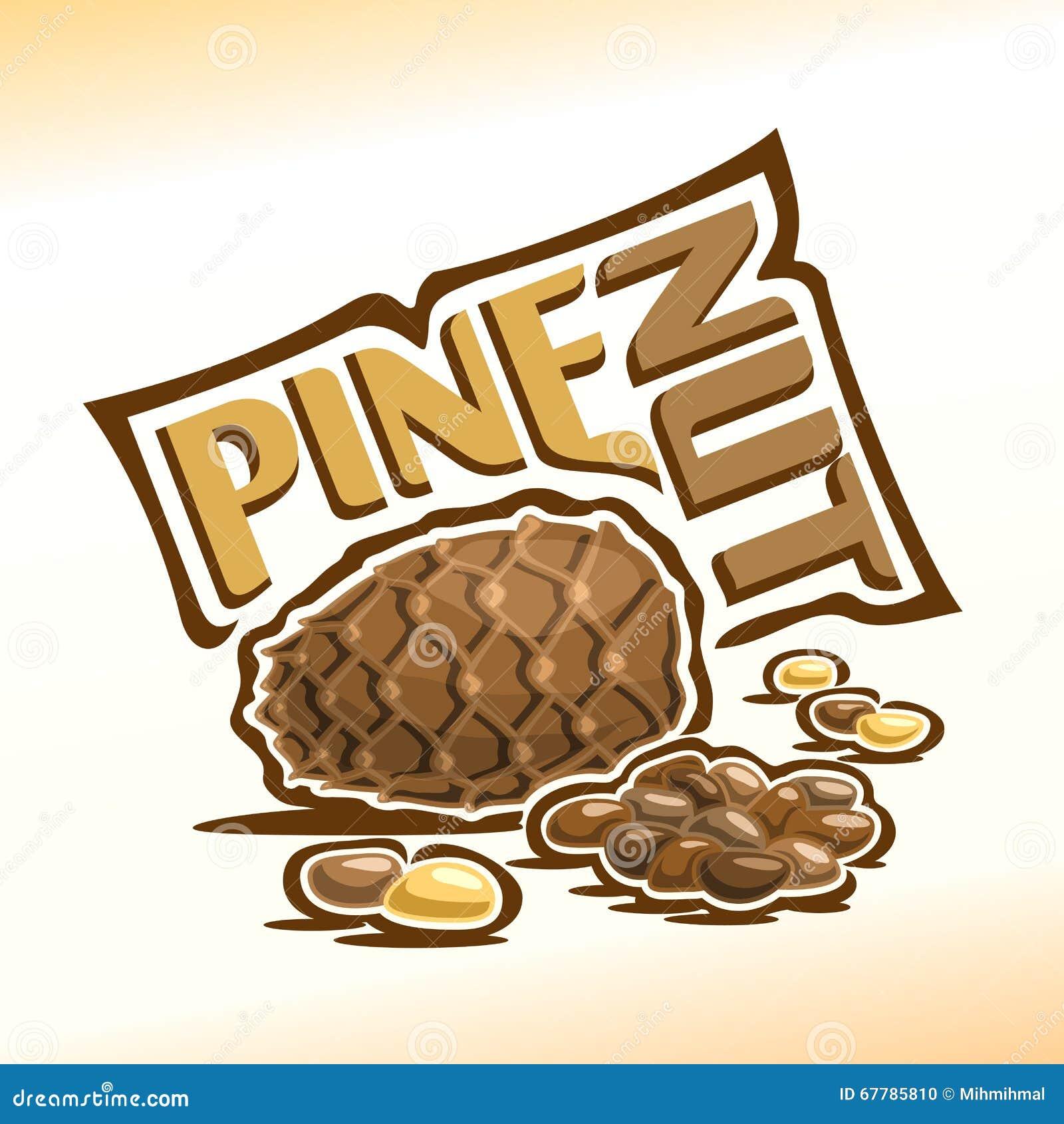 Nueces del cono y de pino del cedro