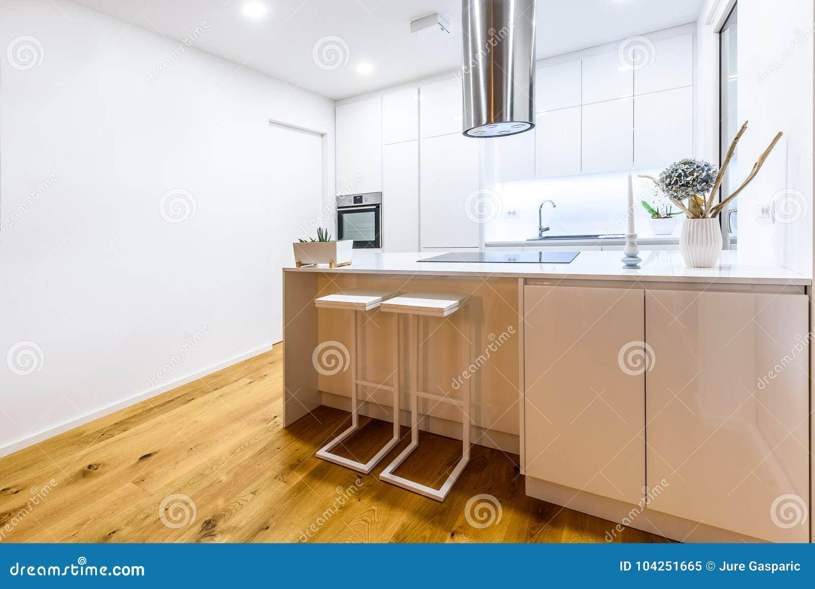 Nueva Cocina Blanca Moderna Del Diseno Interior Con Los