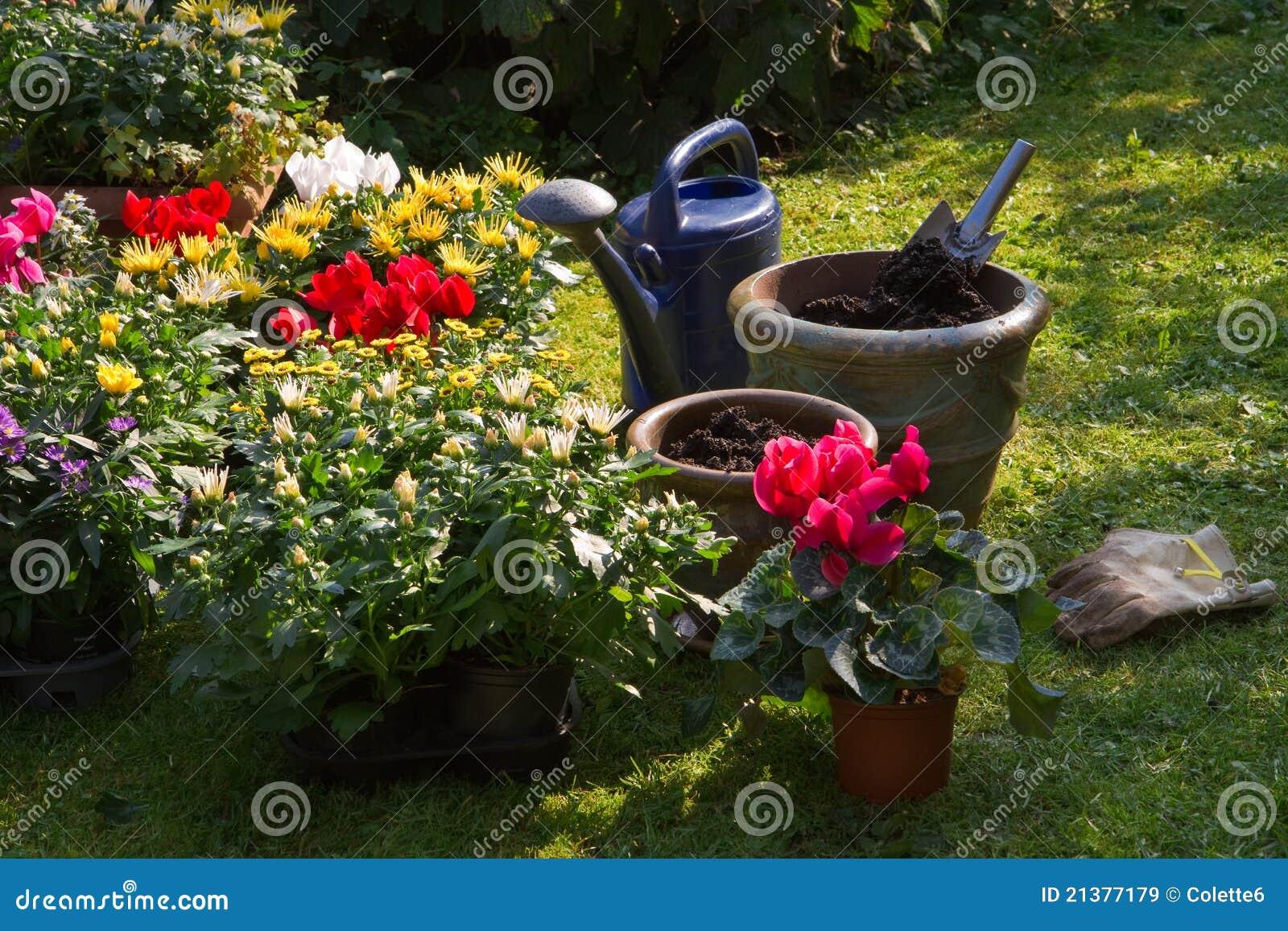 Nuevas plantas en las macetas para el jard n del oto o imagen de archivo imagen de relajaci n - Macetas en la pared ...