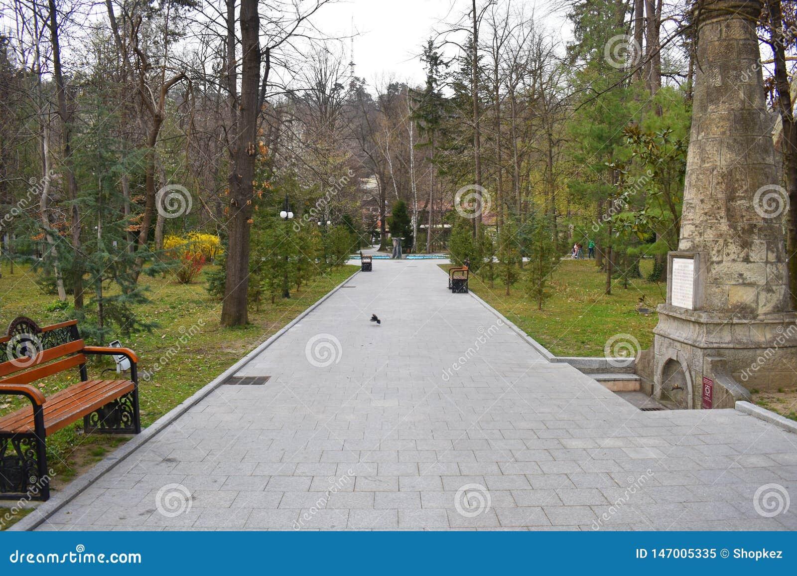 Nuevo camino y pista hermosa de los ?rboles para correr o caminar y completar un ciclo para relajarse en el parque en campo de hi