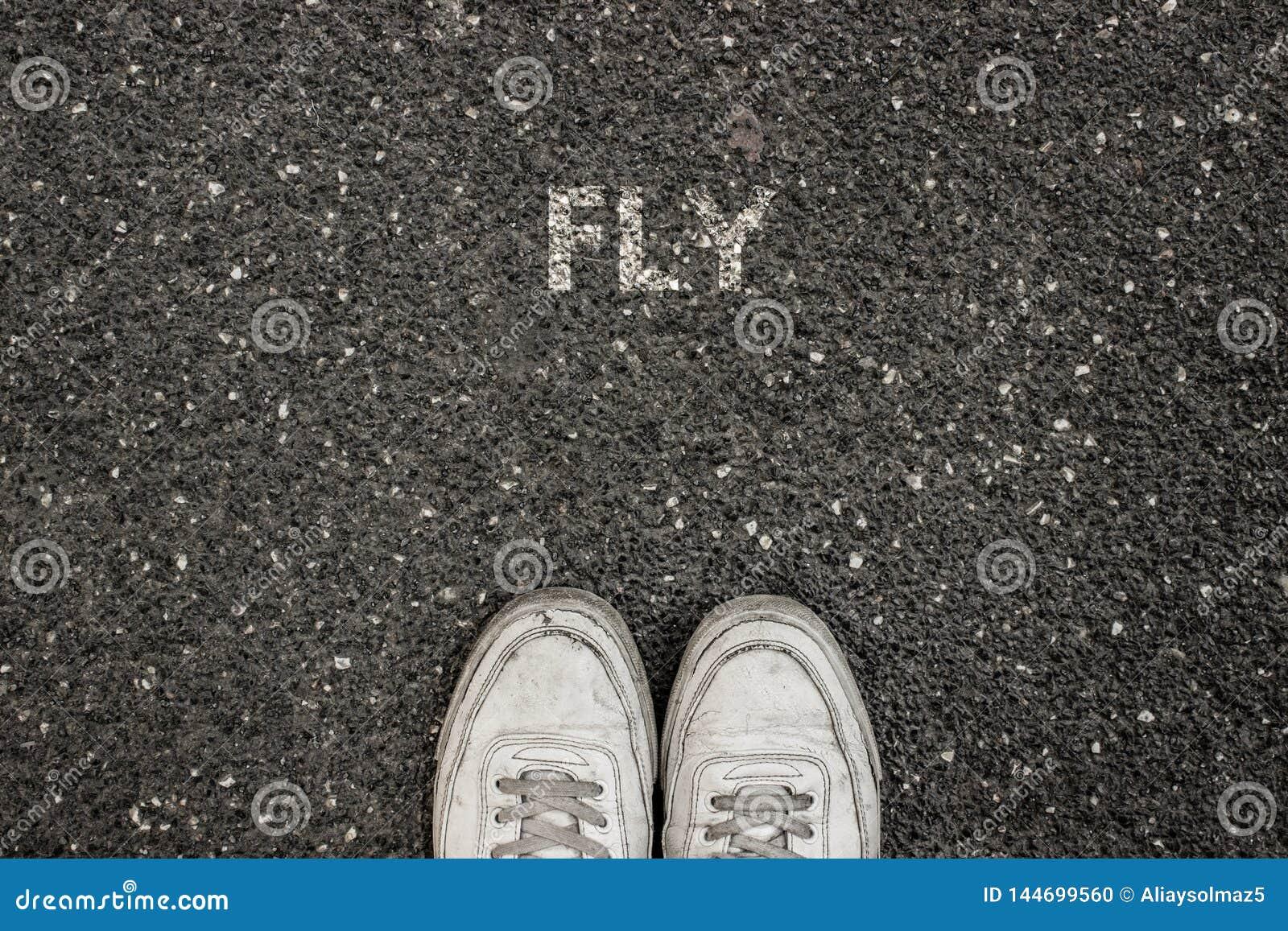 Nuevo concepto de la vida, lema de motivación con la MOSCA de la palabra por motivo del asfalto