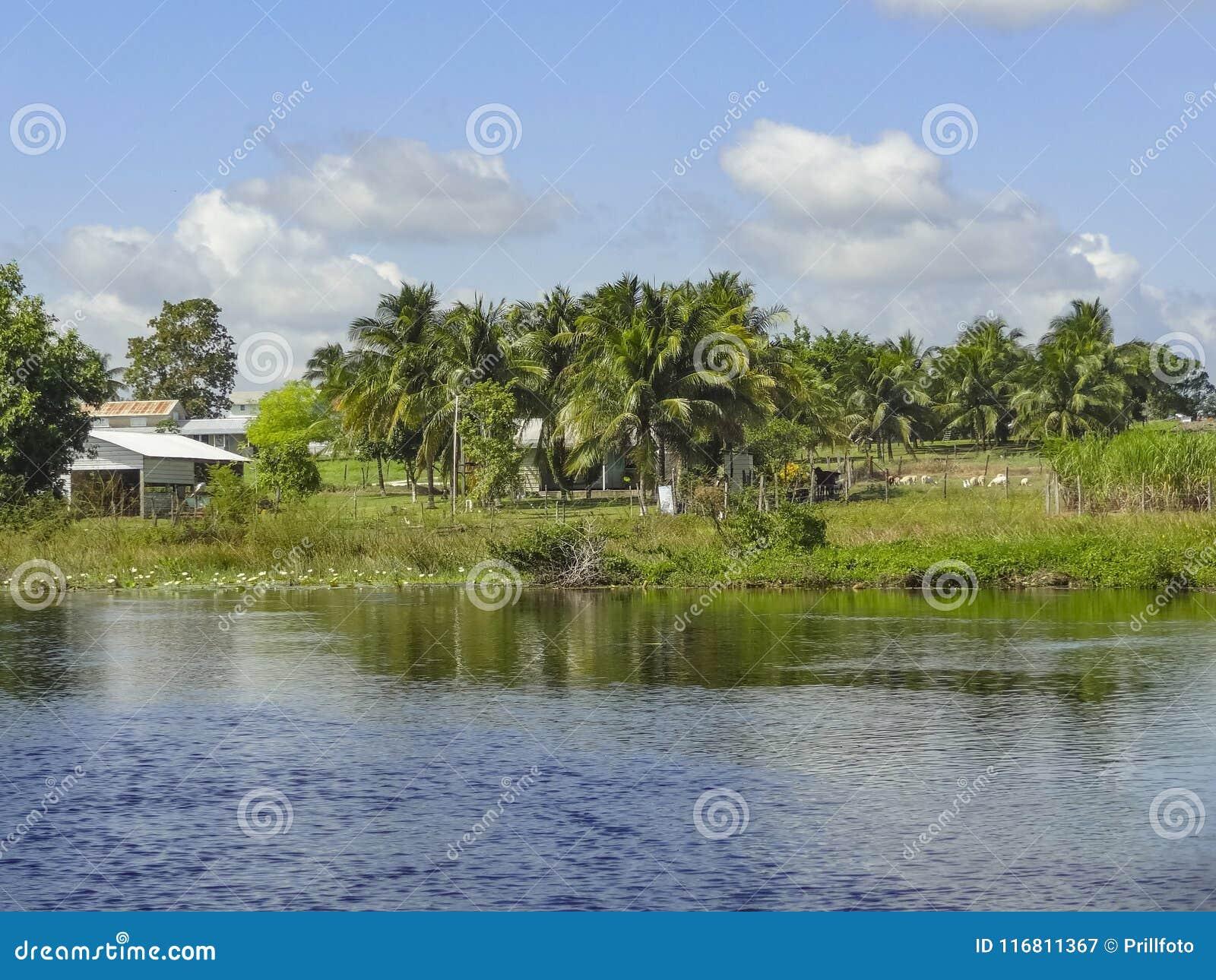 Nuevo río en Belice