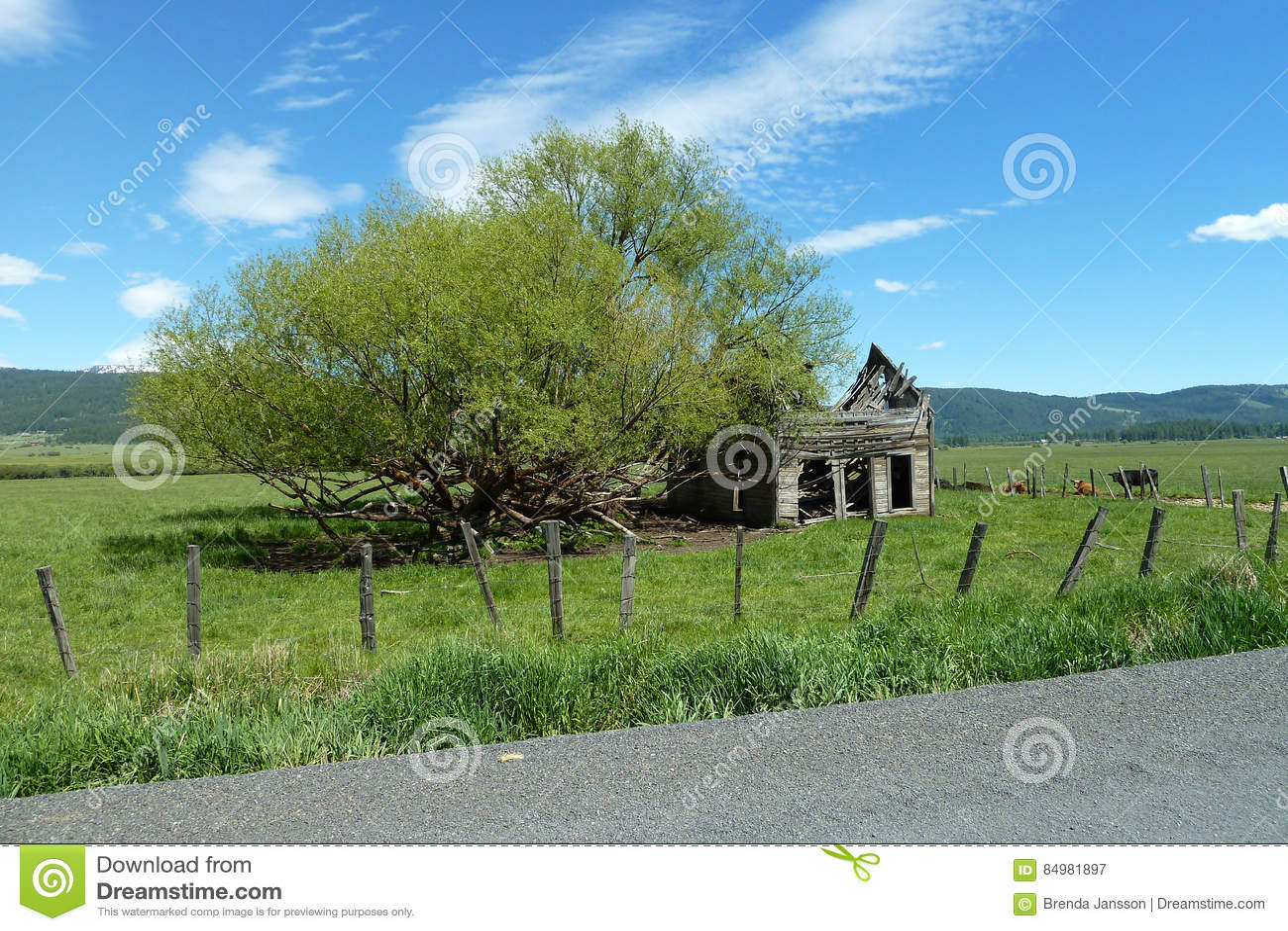 Nuevos prados, granero histórico de Idaho