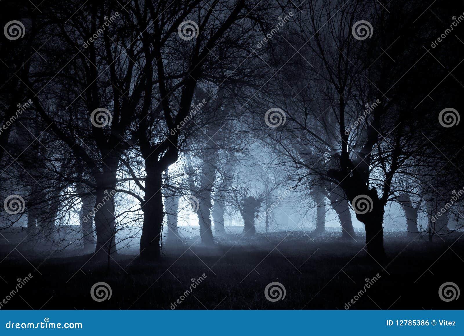 Nuit fantasmagorique