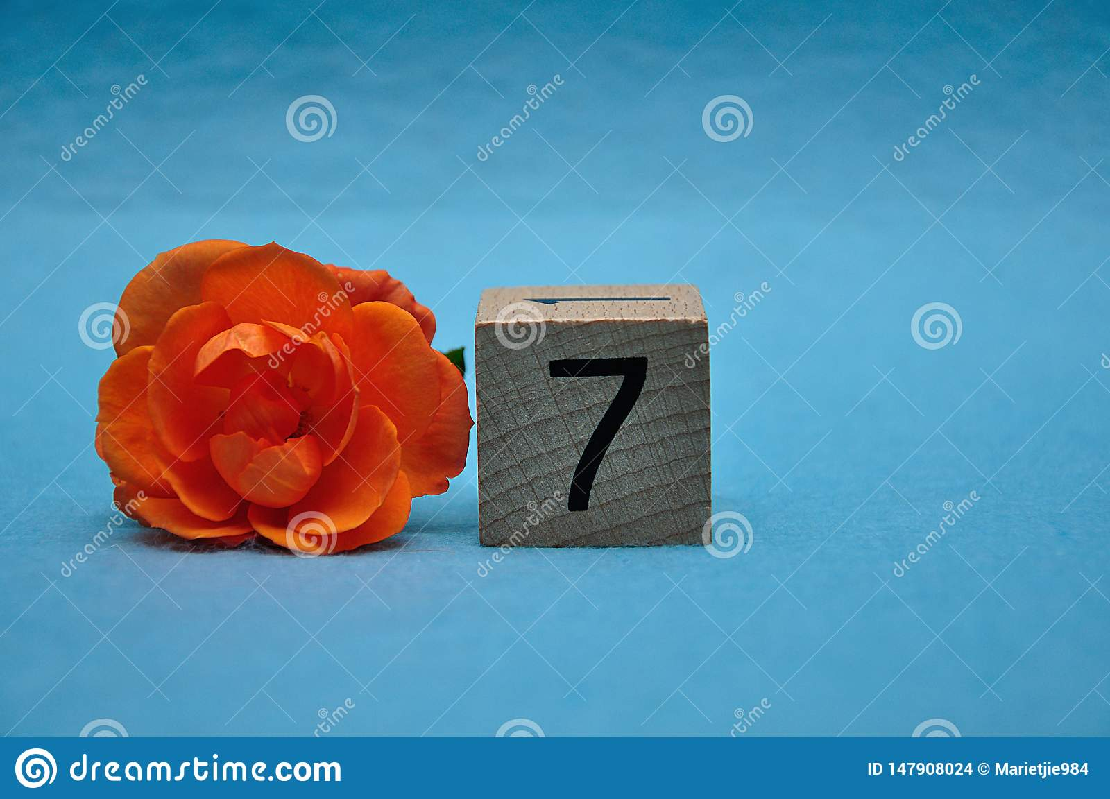 Number seven with an orange rose