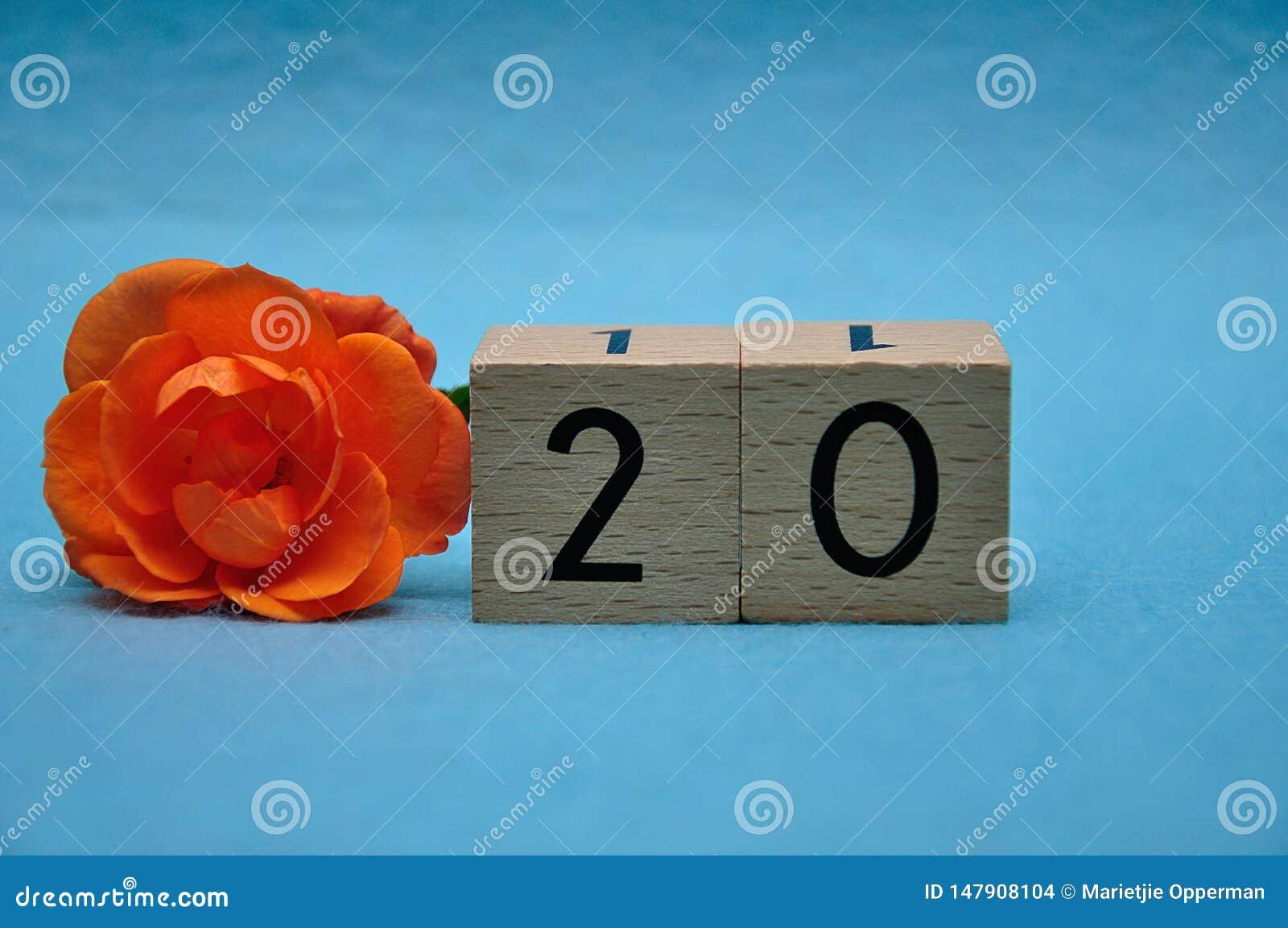 Number twenty with an orange rose