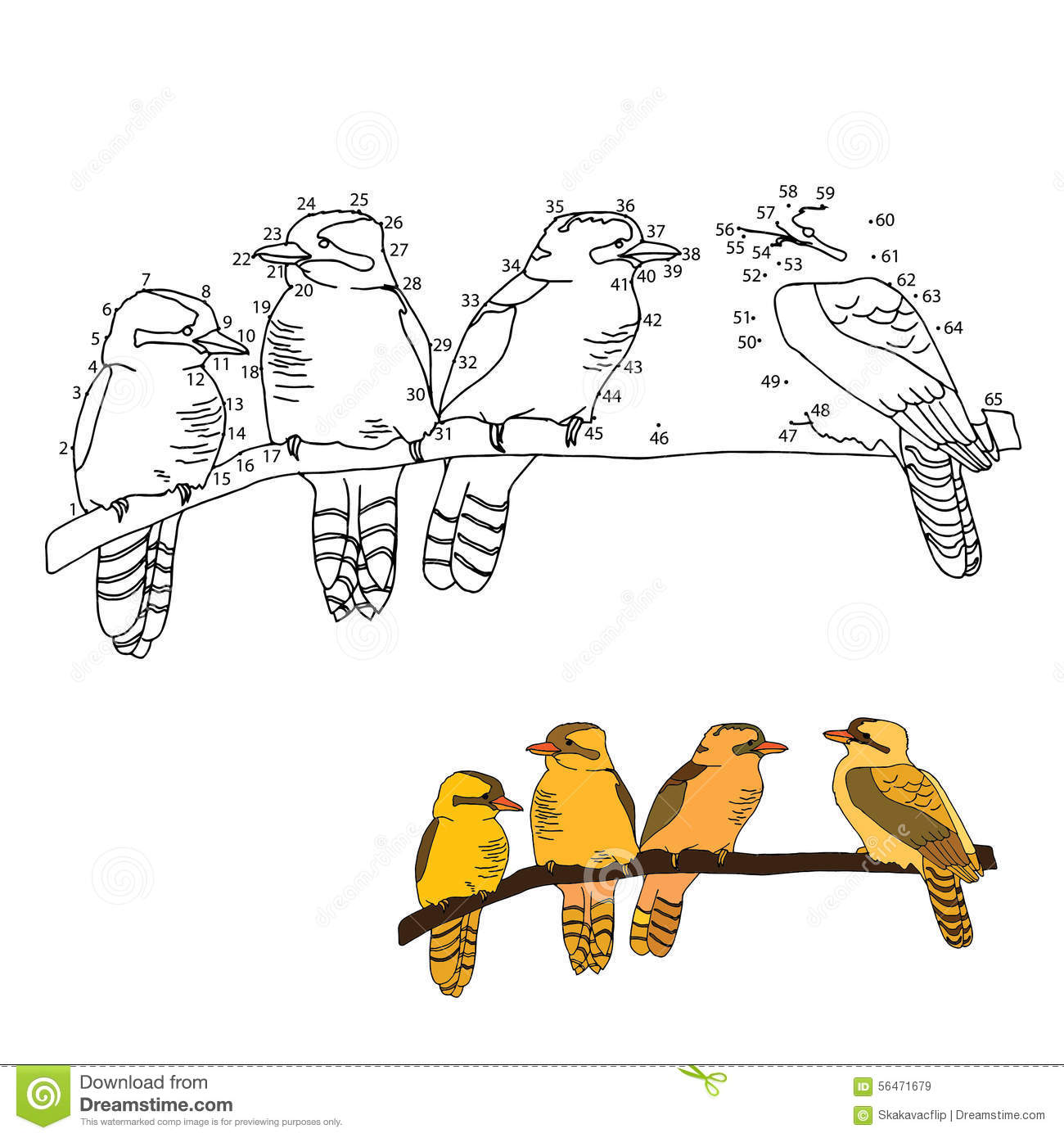Numbers Game Birds Stock Illustration Illustration Of Collection