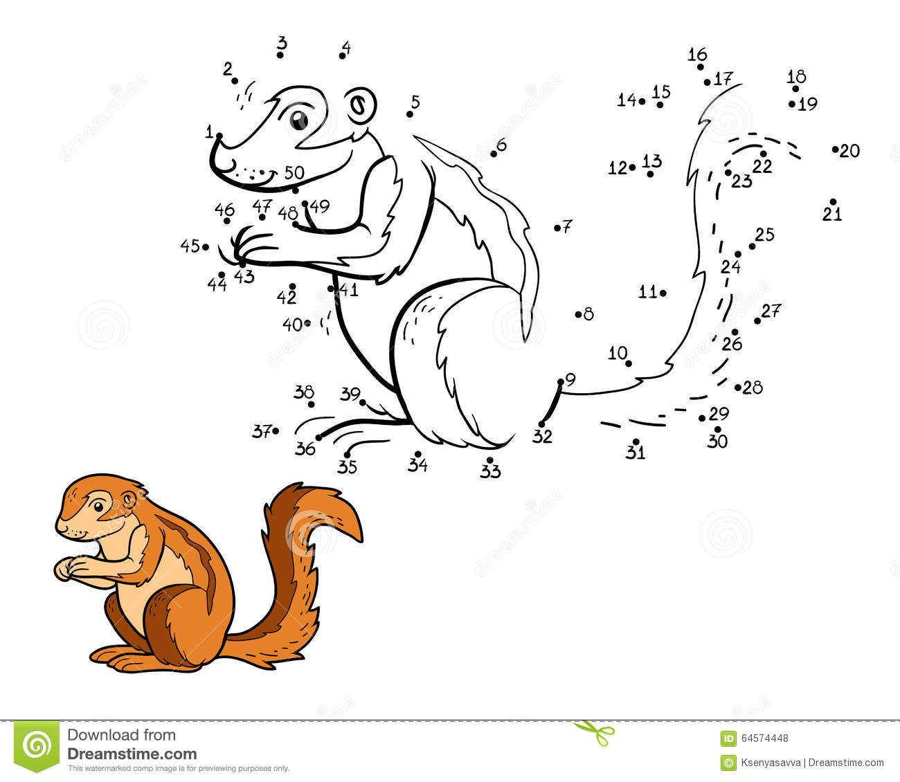 xerus squirrel coloring pages - photo #13