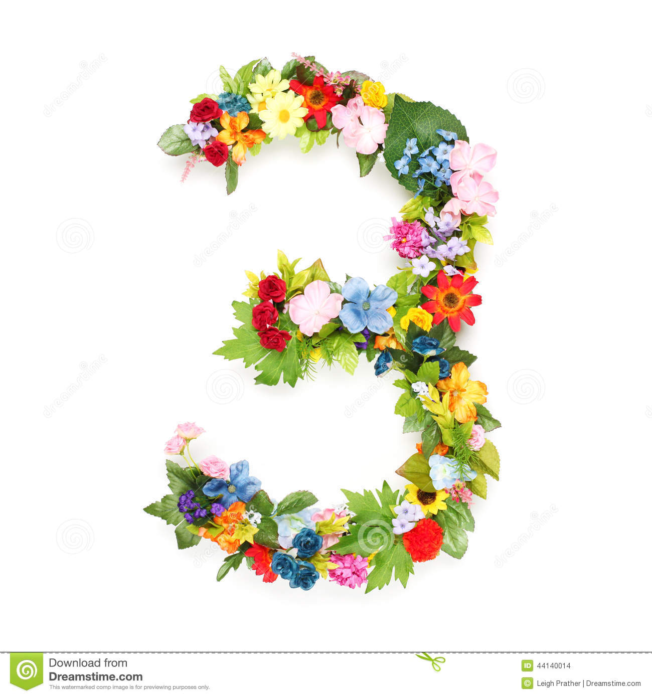 Numbers Made Of Leaves  U0026 Flowers Stock Photo