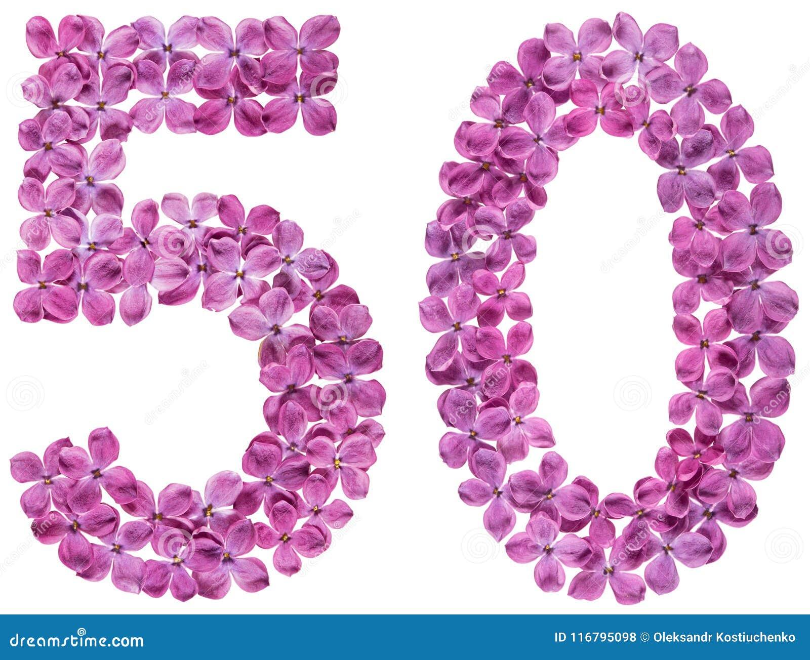 Numeral árabe 50, cinqüênta, das flores do lilás, isoladas no whi