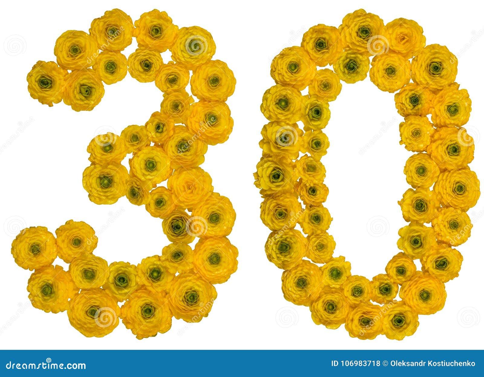 Numeral árabe 30, trinta, das flores amarelas do botão de ouro, iso