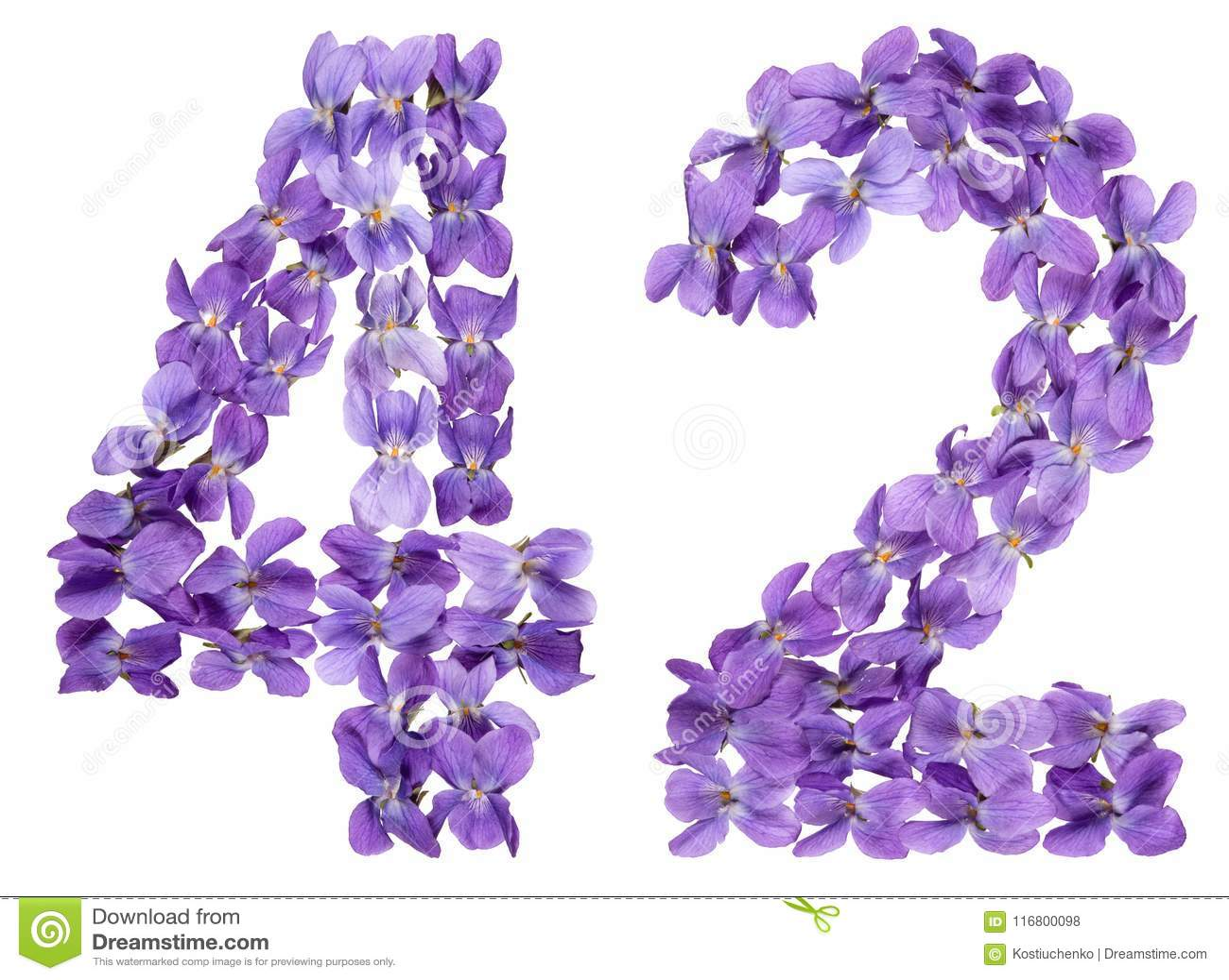 Numero arabo 42, quarantadue, dai fiori della viola, isolati sopra