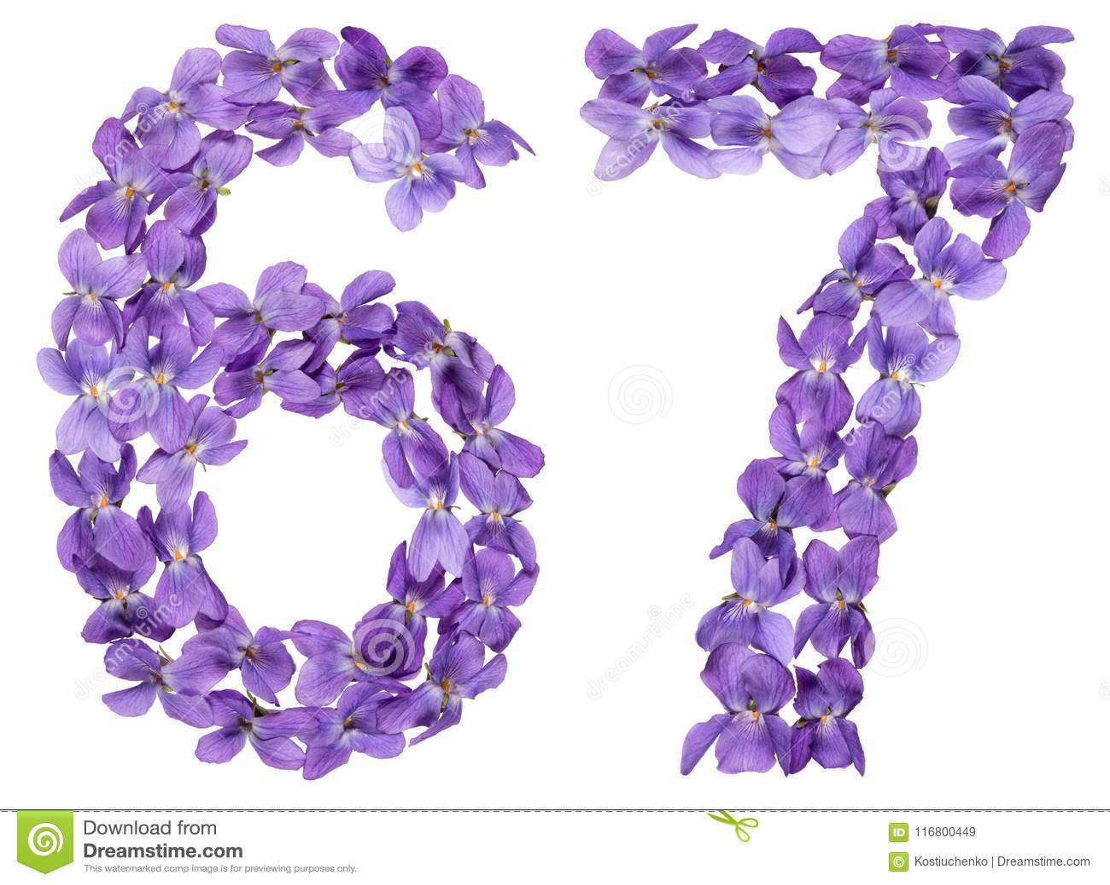Numero arabo 67, sessantasette, dai fiori della viola, isolati