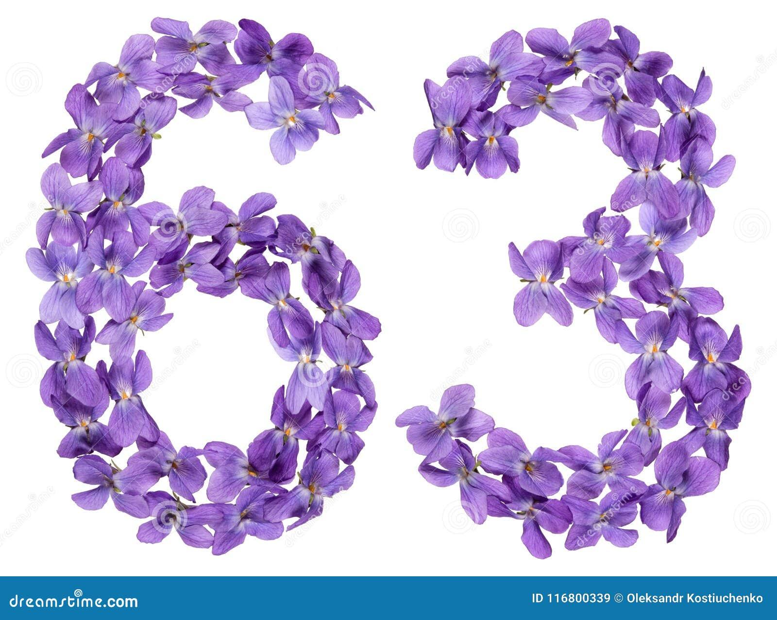 Numero arabo 63, sessantatre, dai fiori della viola, isolati