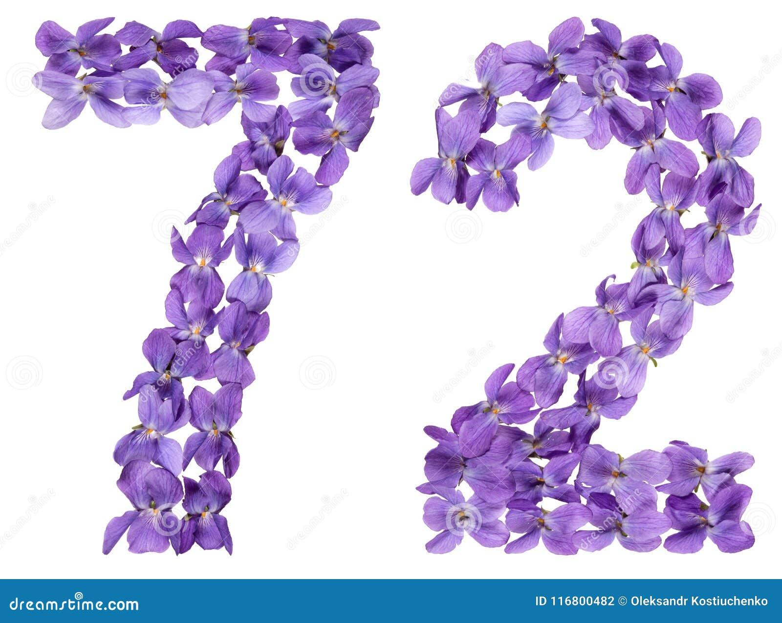 Numero arabo 72, settantadue, dai fiori della viola, isolati