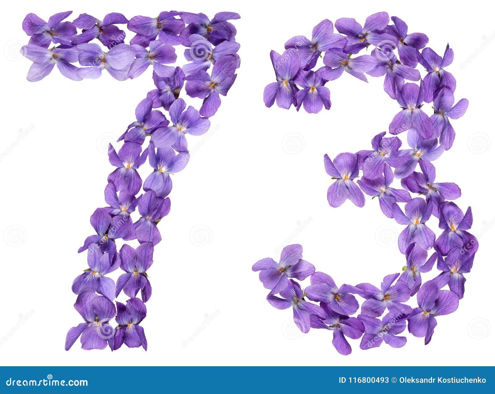 Numero arabo 73, settantatre, dai fiori della viola, isolato