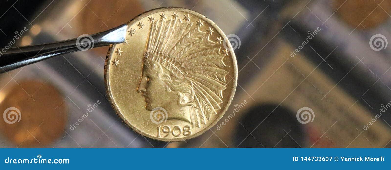 Numismatic на работе показывает некоторые золотые монеты