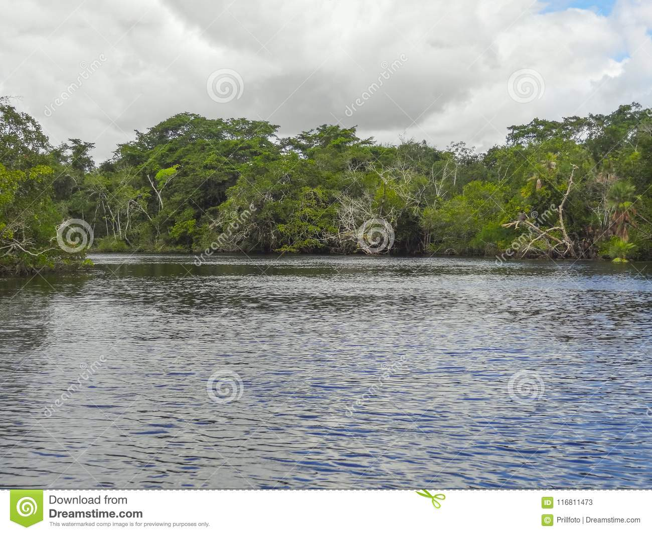 Nuovo fiume a Belize