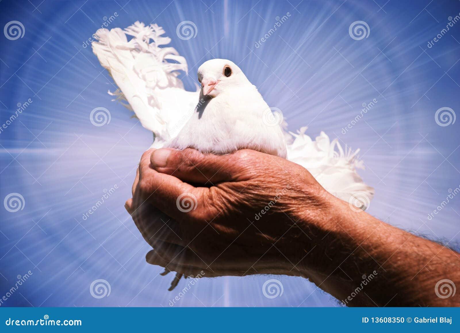 Nurkujący święty duch