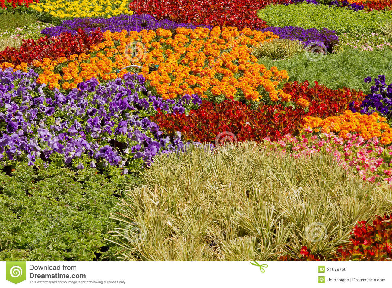 Nursery potted garden plants arrangement stock photo for Garden arrangement of plants