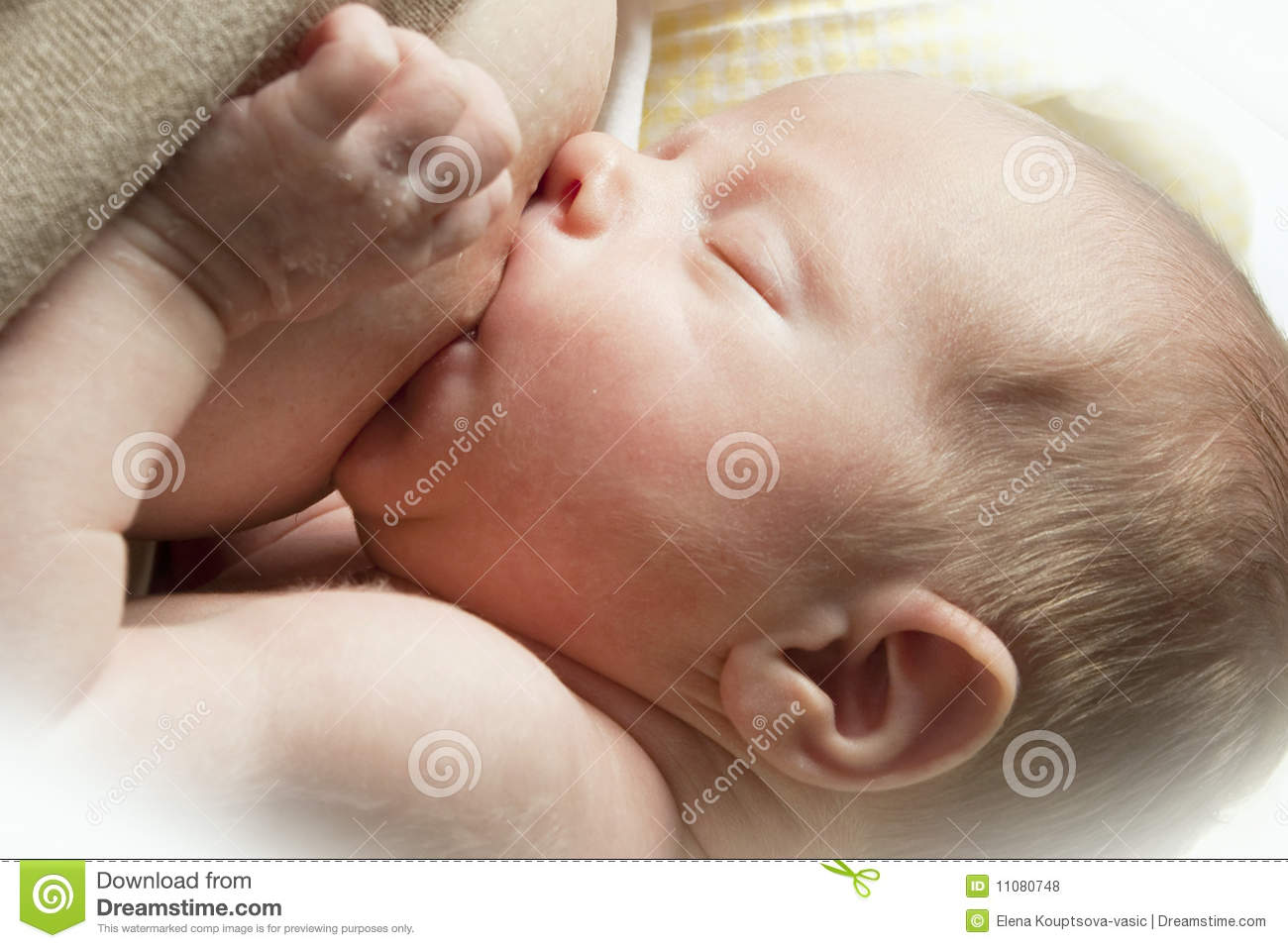 Nursing Baby Royalty Free Stock Photos Image 11080748