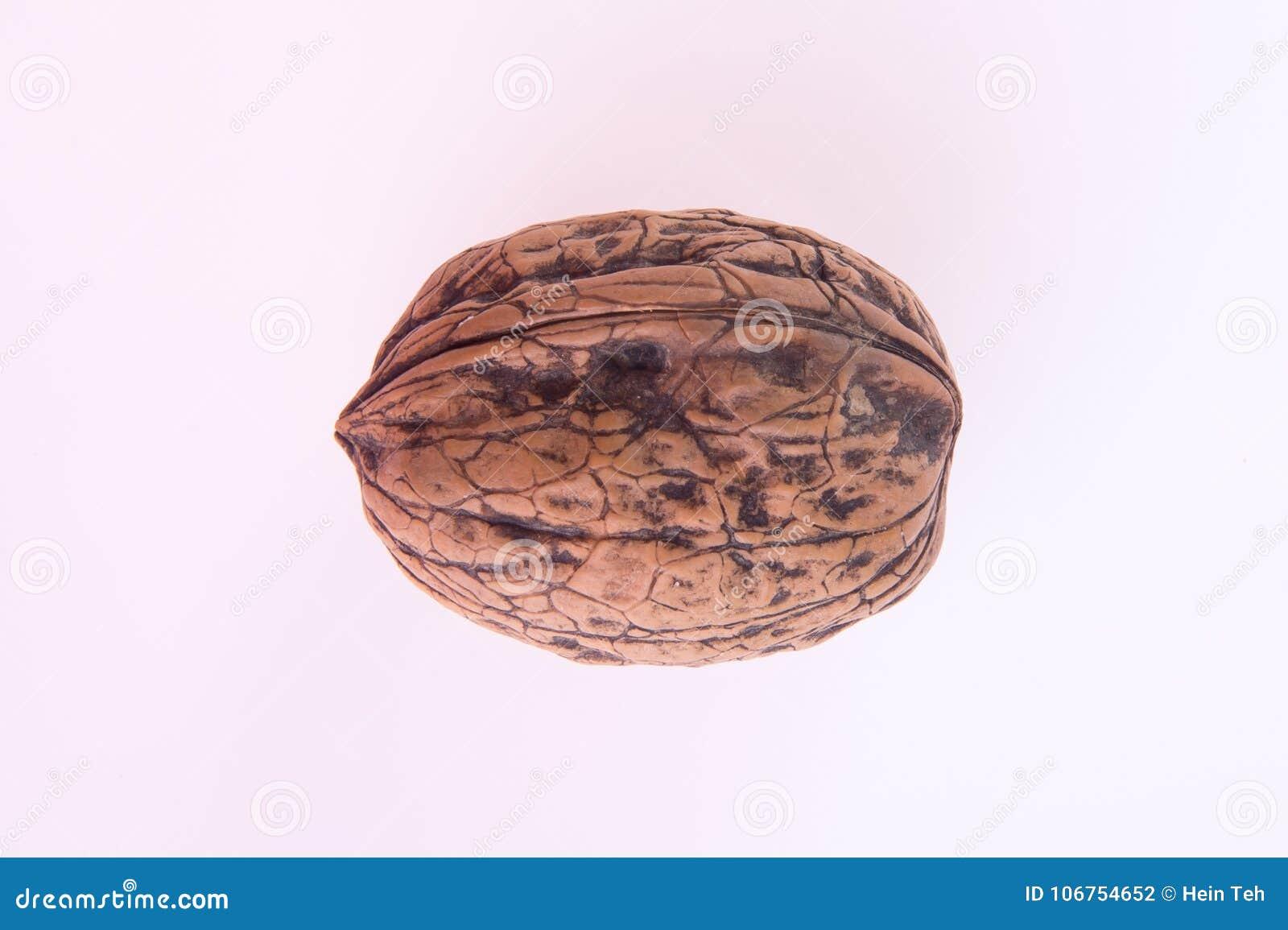 Nut orzech włoski na tle