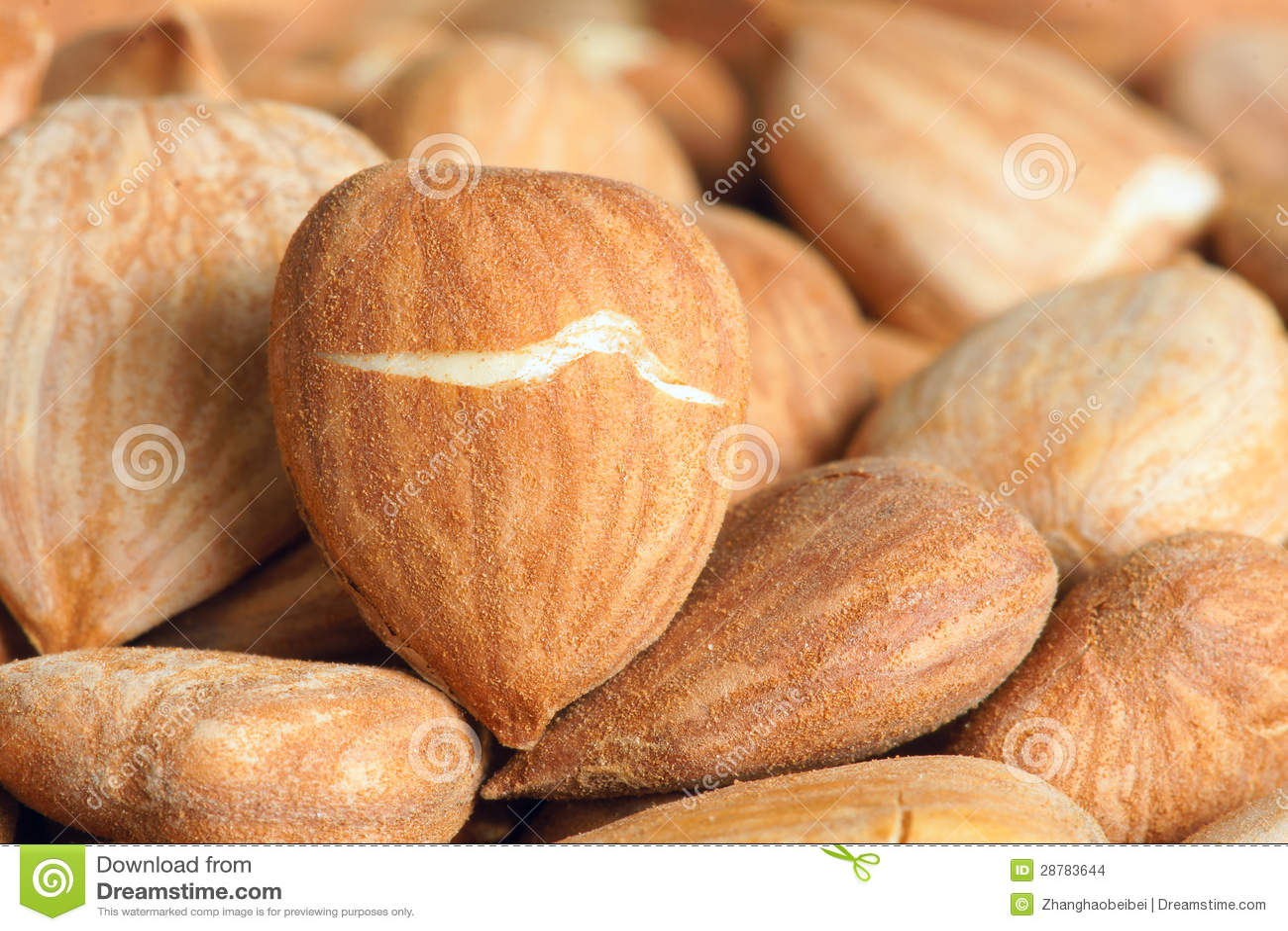Nutlets della pesca