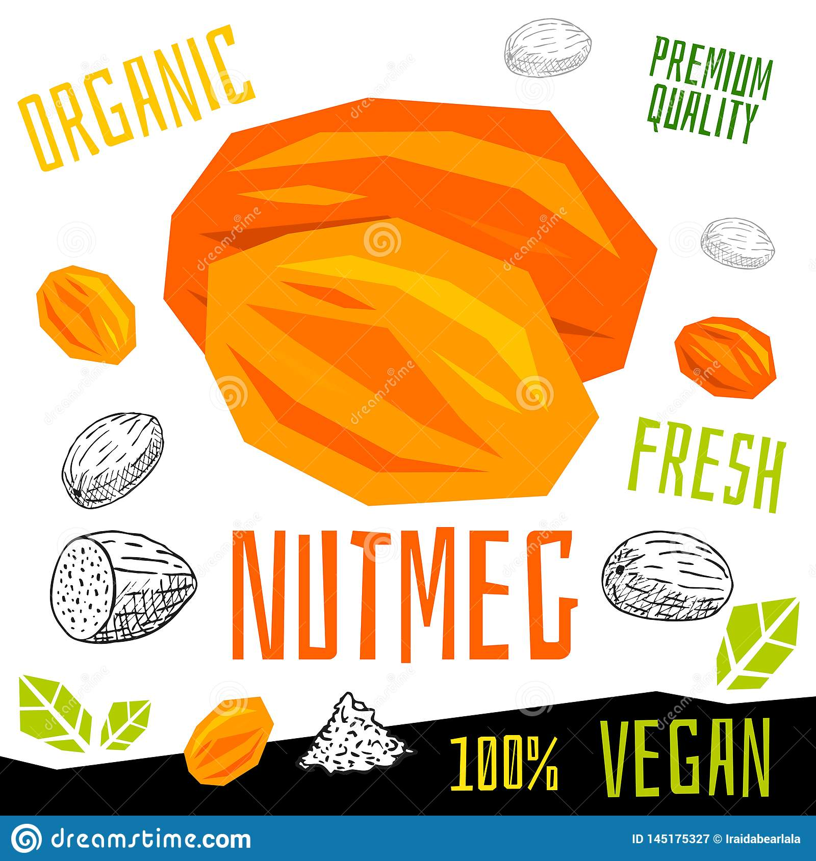 Nutmeg nuts icon herb label fresh organic condiment, nuts herbs spice condiment color graphic design vegan food.