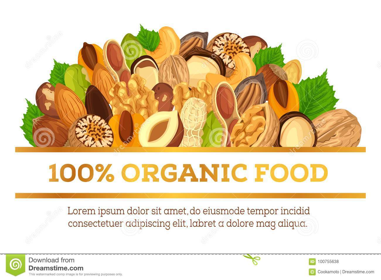Nuts At Banner Made For Vegetarian Organic Food Stock Vector Illustration Of Corn Organic 100755638
