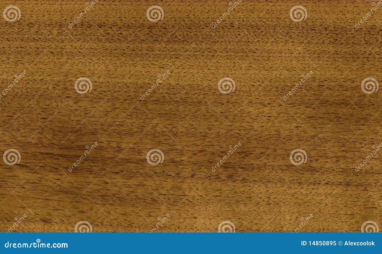 Nutwood veneer