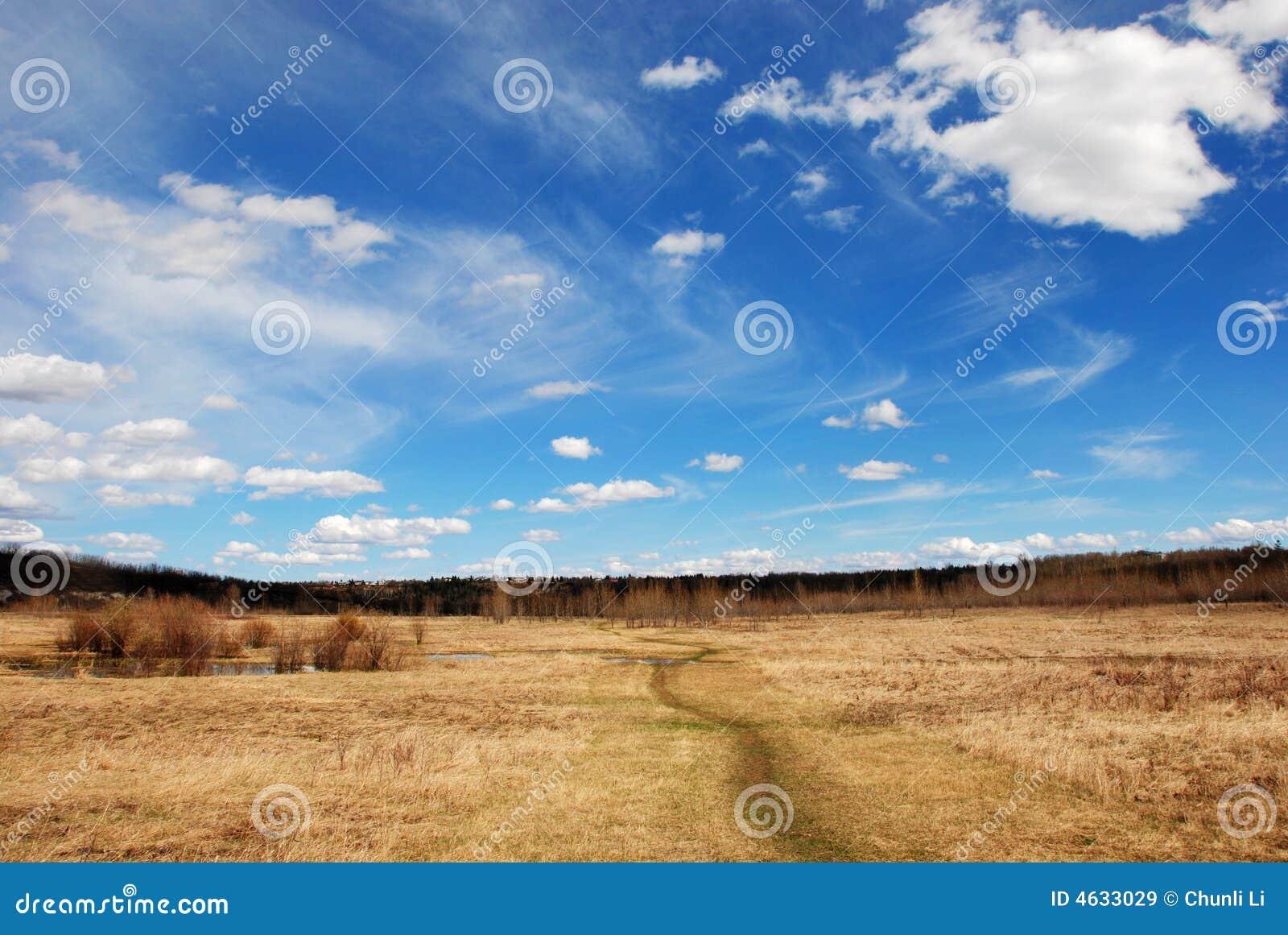 Nuvens acima da grama